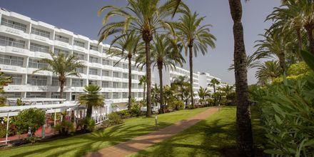 Puutarha. Hotelli Abora Catarina by Lopesan, Playa de Ingles, Gran Canaria.
