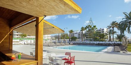 Allasbaari. Hotelli Abora Catarina by Lopesan, Playa de Ingles, Gran Canaria.