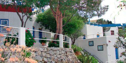 Hotelli Aegean Homes, Myrties & Massouri, Kalymnos.