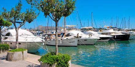Port de Alcudia, Mallorca, Espanja.