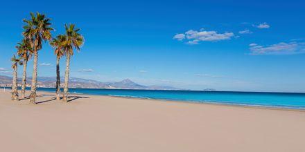 Playa de San Juan Alicantessa, mikä on yksi Espanjan parhaimmista rannoista.