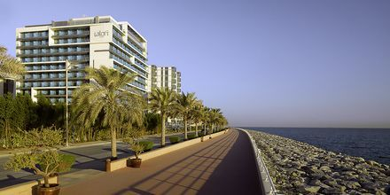 Hotelli Aloft Palm Jumeirah. Dubai, Arabiemiraatit.
