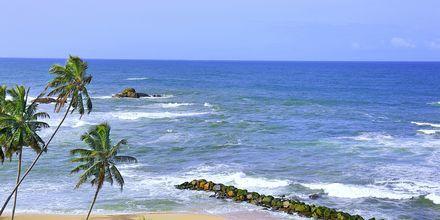 Ranta, hotelli Amari Galle. Sri Lanka.