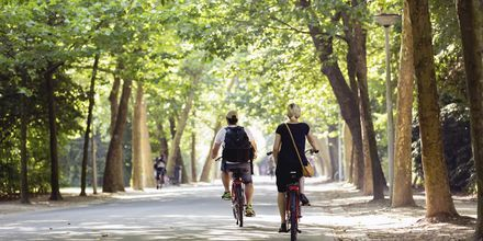Amsterdamin suurin puisto, Vondelpark, on upea ja vehreä keidas keskellä kaupunkia.