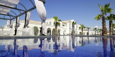 Allasalue. Anemos Luxury Grand Resort, Georgiopolis, Kreeta.
