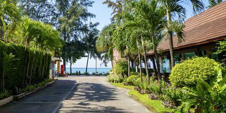 Tie rannalle, Aonang Princeville Villa Resort & Spa, Thaimaa.