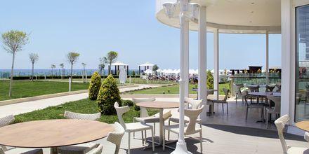 Á la carte -ravintola, hotelli Gold Island. Alanya, Turkki.