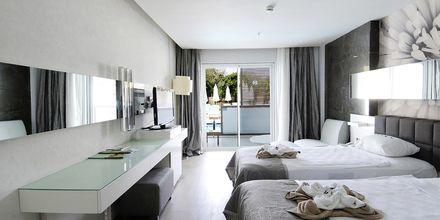 Superior-huone jaetulla altaalla. Hotelli Gold Island, Alanya, Turkki.