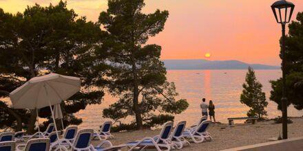 Rantakatu, hotelli Apollo Mondo Family Romana, Kroatia.