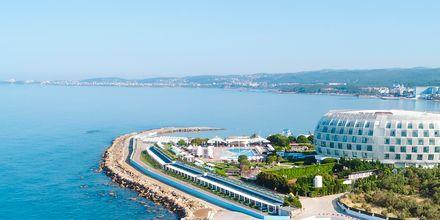 Hotelli Gold Island. Alanya, Turkki.