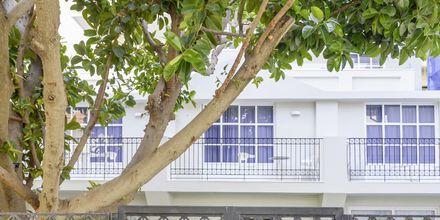 Hotelli Aquarius, Rethymnon, Kreeta.