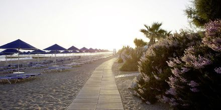 Ranta, Hotelli Aquila Rithymna Beach, Kreeta, Kreikka.