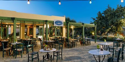 Kahvila, Hotelli Aquila Rithymna Beach, Kreeta, Kreikka.