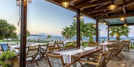 Hotelli Windmill Bay. Argassi, Zakynthos, Kreikka.