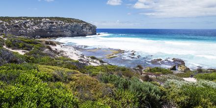 Kangaroo Island, Australia.