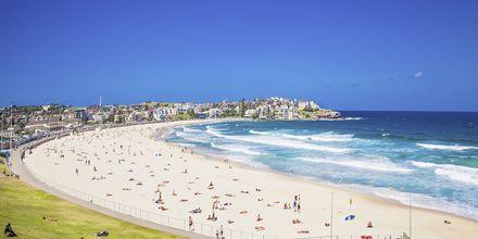 Suosittu Bondi Beach, Sydney.
