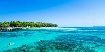 Cairns, Australia.