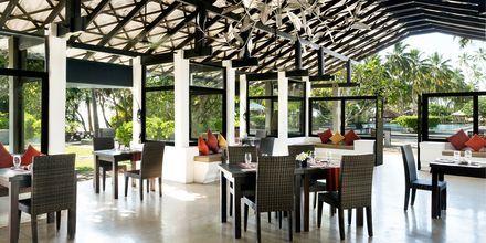 Ravintola Frangipani, hotelli Avani Bentota Resort & Spa. Bentota, Sri Lanka.
