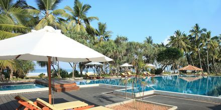 Allasalue, hotelli Avani Bentota Resort & Spa. Bentota, Sri Lanka.
