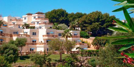 Hotelli Azul Playa. Mallorca.