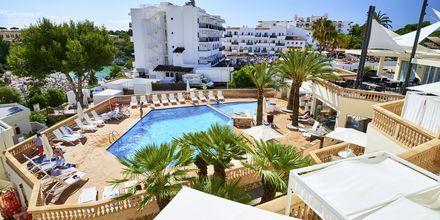 Allasalue, hotelli Azul Playa. Mallorca.