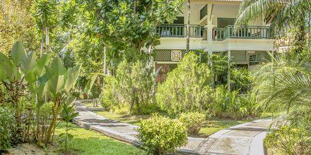 Baan Khaolak Beach Resort - talvi 19/20