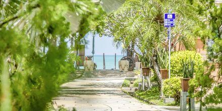 Tie rannalle. Hotelli Baan Khaolak Beach Resort, Thaimaa.
