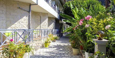 Puutarha. Hotelli Bacoli, Parga, Kreikka.