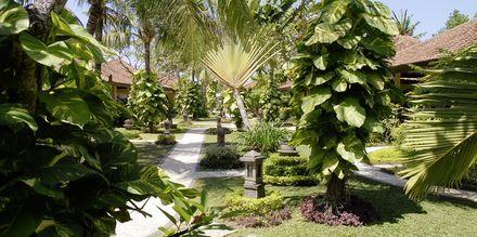 Puutarha. Hotelli Bali Reef Resort, Tanjung Benoa, Bali.