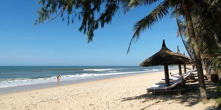 Ranta, Bamboo Village Resort, Phan Thiet, Vietnam.