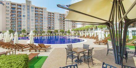 Allasalue, hotelli Barcelo Royal Beach.
