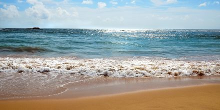 Aurinkoa ja rantoja. Bentota, Sri Lanka.