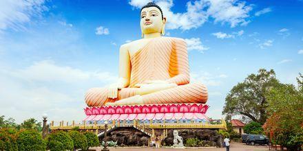 Buddhalainen temppeli Kande Vihara. Bentota, Sri Lanka.
