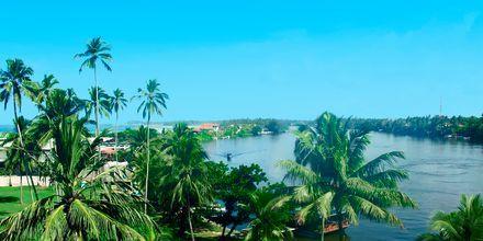Bentota, Sri Lanka.