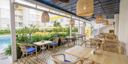 Ravintola, Hotelli Bloom Suites, Pohjois-Goa, Intia.