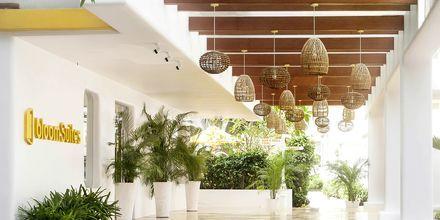 Hotelli Bloom Suites, Pohjois-Goa, Intia.
