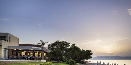 Ravintola Basil' Honey näkymällä rannalle, hotelli Blue Dome, Platanias, Kreeta.