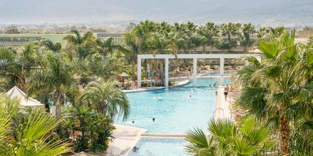 Allasalue, hotelli Blue Lagoon Resort, Lambi, Kos.