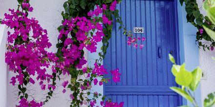 Lefkos, Karpathos, Kreikka.
