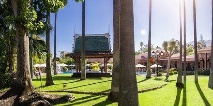 Puutarha. Hotelli Botanico, Puerto de la Cruz, Teneriffa.