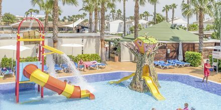 Lastenallas. Hotelli BQ Alcudia Sunvillage, Mallorca, Espanja.