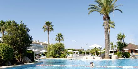 Allasalue. Hotelli BQ Alcudia Sunvillage, Mallorca, Espanja.