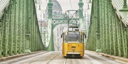 Keltaiset raitiovaunut ovat Budapestin klassisia symboleita.