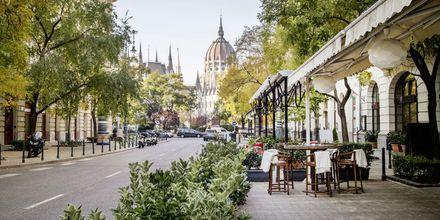 Budapestissä on useita hyviä ravintoloita.