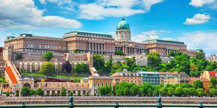 Budapestin kuninkaanlinna on UNESCO:n maailmanperintökohteiden listalla.