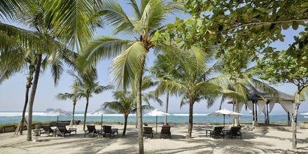Hotelli Candi Beach Resort & Span läheinen ranta.