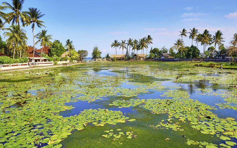 Lootus-laguuni. Candi Dasa, Bali.