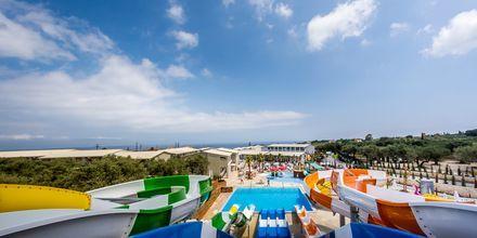 Caretta Paradise