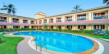 Deluxe-huoneiden allas, Hotelli Casa de Goa, Intia.