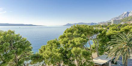 Läheinen ranta. Hotelli Central Beach 9, Makarska, Kroatia.